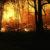 Количество пожаров в некоторых регионах утроилось